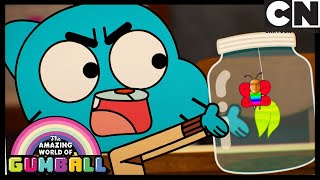 The Butterfly Effect | Gumball | Cartoon Network
