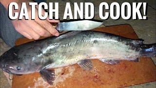 Catfish Dinner! Camp Cooking Red Dead Redemption 2 Style! - Junkyard Fox Video