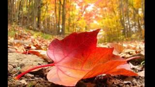 Осень (группа Краски)