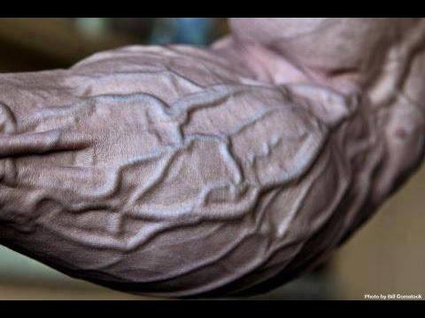 Unterarme trainieren - Übungen für kräftige