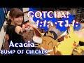 【しゃっぽ。】ポケモン GOTCHA! アカシア - Acacia/BUMP OF CHICKEN【たたいてみた】Pokemon
