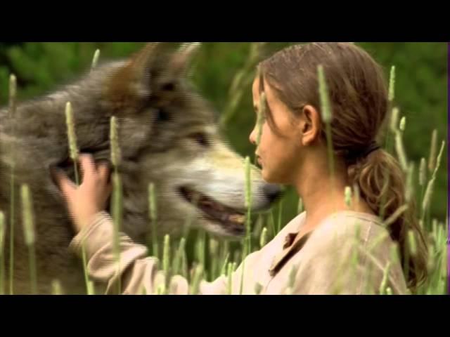 Wolf Summer Trailer