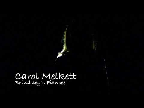 Black Comedy Trailer