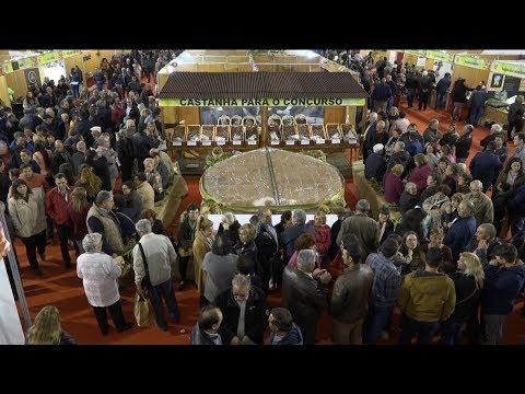 ONDA LIVRE TV - Feira da Castanha de Carrazedo de Montenegro