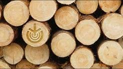 Mhy Etelä-Savon puukauppapalvelut