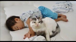寝てる1歳児にもスリスリしちゃうスーパー甘えん坊猫もちとら