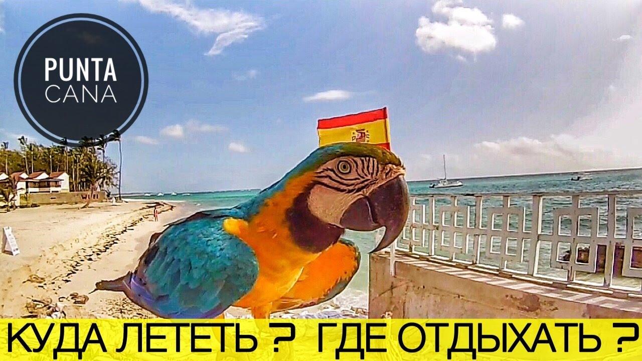Пунта Кана. До урагана Мария.  Говорящий попугай. Сигары. Дайвинг на байдарке.Отдых в Доминикане