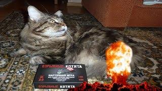 Взрывные котята. Блудная версия - настольная игра 18+