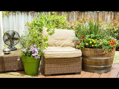 How To - DIY Mosquito Repelling Container Garden - Hallmark Channel ...