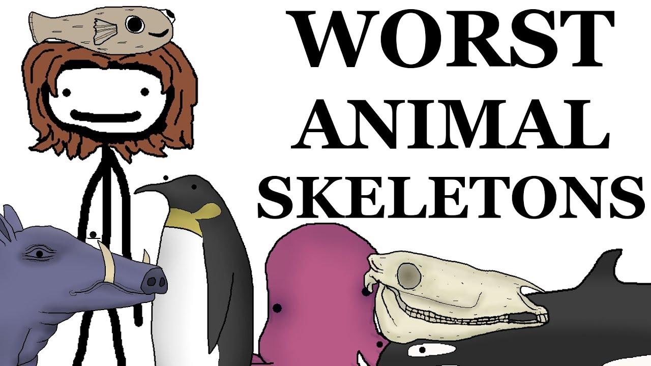 Top 10 Worst Animal Skeletons