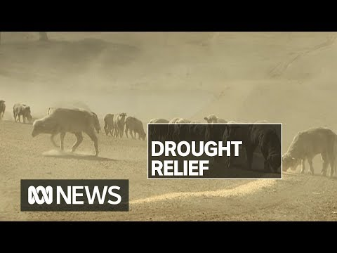 Mixed response to Government drought stimulus package | ABC News