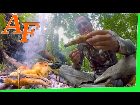Overnight Tropical Jungle Scout Catch and Cook w Barramundi Perch Eel Jack EP.406
