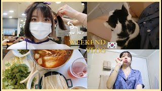 DAILY VLOG 🇰🇷 haircut + quality time with bestfriend   Erna Limdaugh