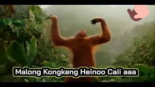 Download HEBOH DAN VIRAL KINGKONG IKUT JOGET II LIRIK LAGU MALING KINGKONG II THAILAND - MA LONG KONG KAENG