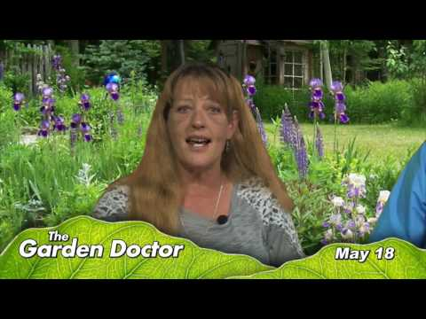 Garden Doctor, May 18th 2017 (HD)