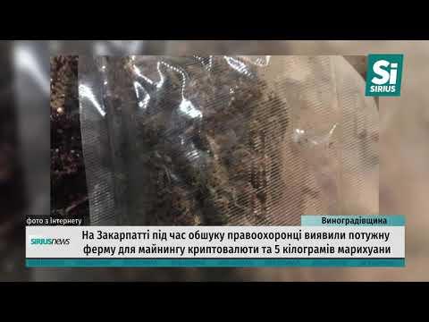 На Виноградівщині правоохоронці виявили потужну криптоферму