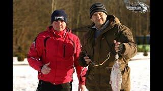 БЕШЕНЫЙ КЛЕВ В МОРОЗ ПОПАЛИ НА ЖОР Вот это рыбалка ФОРЕЛЬ ИЗ ЛУНКИ