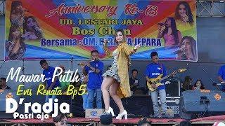 Mawar Putih EVIS RENATA BP5 - D 39 RADJA MUSIC GARUNG LOR KALIWUNGU KUDUS PLAYER KAK OSO.mp3