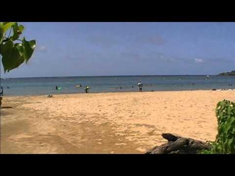 Plage du bourg de Tartane - Trinité - Martinique