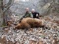 2012 WILD BOAR (SANGLIER) ATTILA HUNTING (Chasse) IN TAJIKISTAN by SELADANG