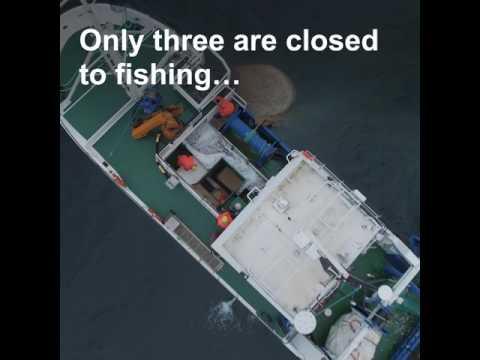 Essential Fish Habitats