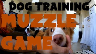 Dog Training - Tagetting Muzzle Game