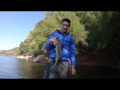 BASS SLAYER @ San Pablo Reservoir