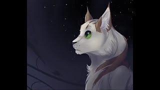 Первая визуальная новелла про Котов-Воителей! Послание Звёзд #1