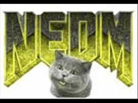 NEDM Song