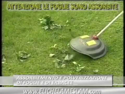 Come tagliare una siepe con il tagliasiepi