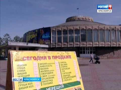 Выставка-продажа саженцев Омского питомника продлится в Красноярске до 27 мая