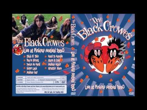 The Black Crowes Pink Pop Festival 1990 Struttin' Blues mp3