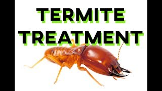 How SPM Carry Out Their Termite Treatments