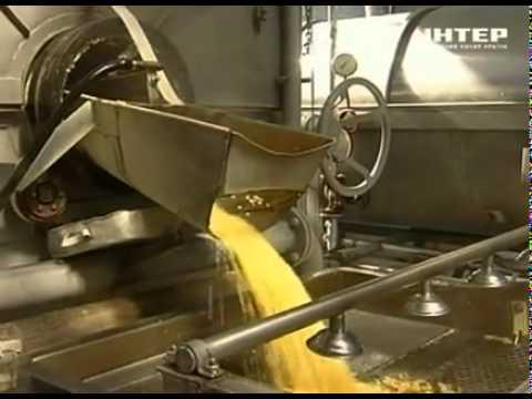 Как консервируют кукурузу на производстве
