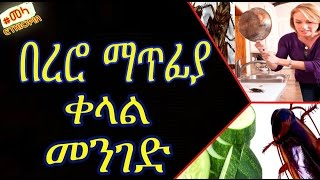 How to Get Rid of Cockroaches From Your Homes -  በረሮን ከቤታችን ማስወገጃ ቀላል መንገድ