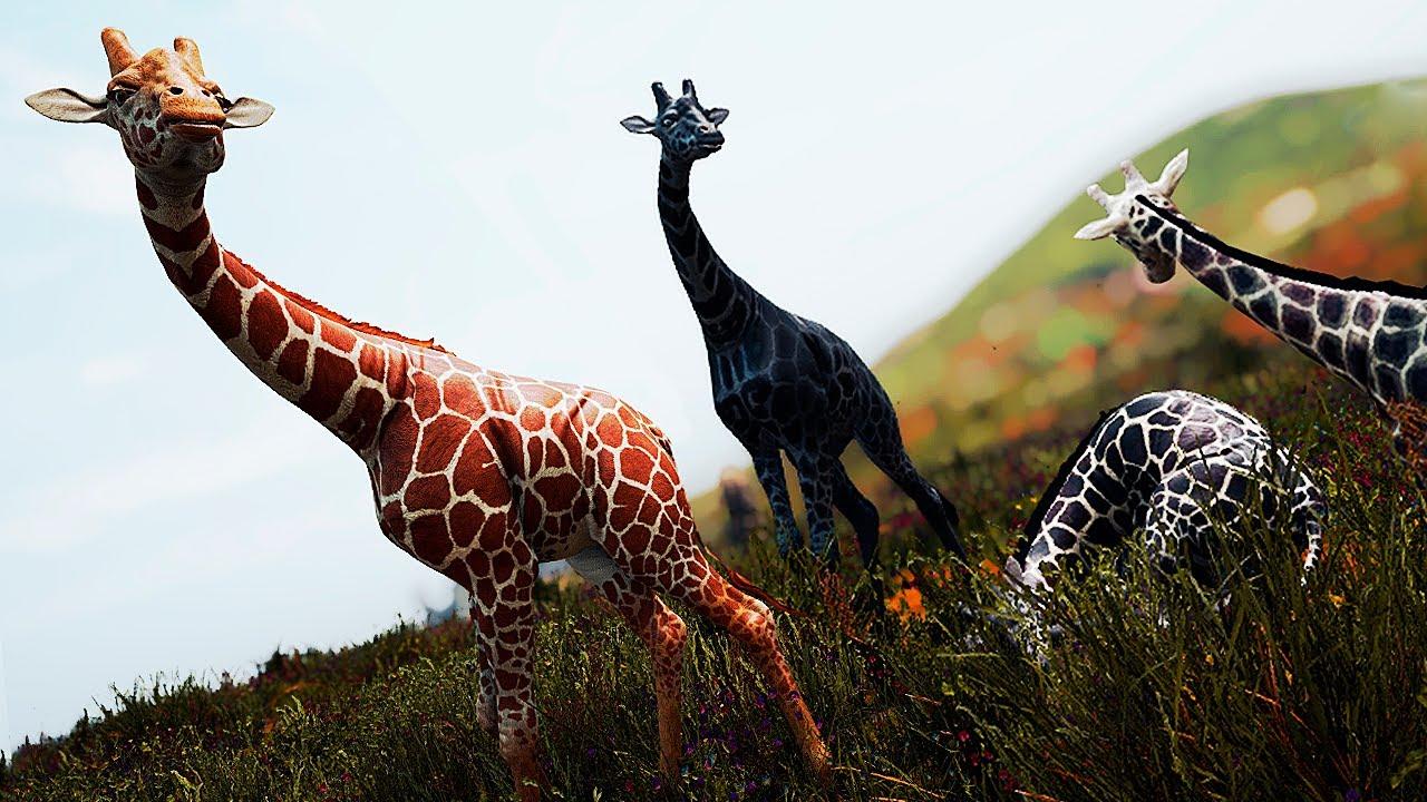 Download A Família de Girafas! Entre Dentes dos Giganotossauros + Explorando a Ilha | Path of Titans | PT/BR