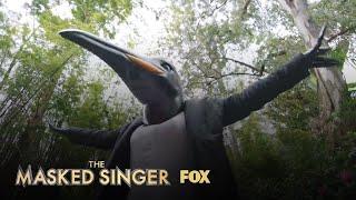The Clues: Penguin | Season 2 Ep. 3 | THE MASKED SINGER