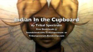 Indian In the Cupboard  -  Tribal Spectrum