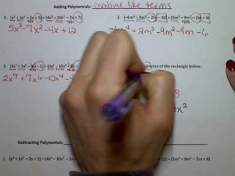 Notes 7.1 Adding & Subtracting Polynomials