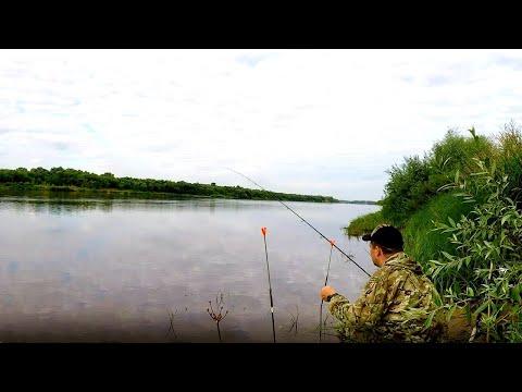 Рыбалка на Оке,