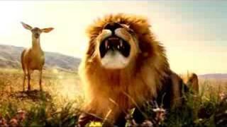 Animals Singing In Commercials