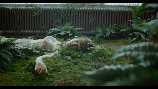 """Johanna Warren - """"Bed Of Nails"""" (Official Music Video)"""