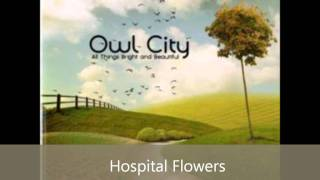 Owl City - All Things Bright And Beautiful All Songs
