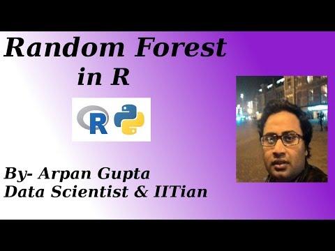 Random Forest R Example