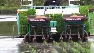 modern machines paddy plantation machine