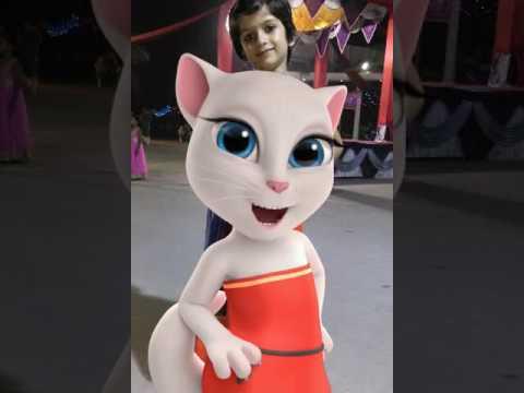 Tom Cat Billi