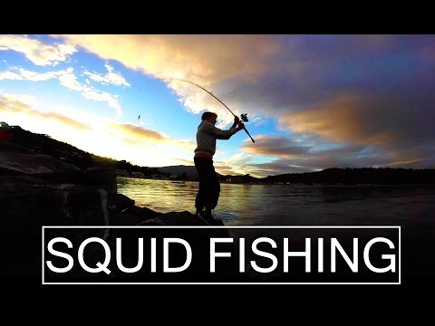 Land-Based Squid Fishing! | Kingston Beach Squid