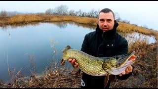 Zimsko varalicarenje stuke na barama 2 deo Winter pike fishing at lakes part 2