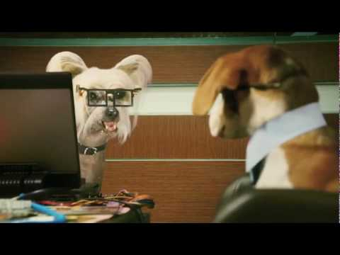 Comme Chiens et Chats 2  Bande Annonce VF