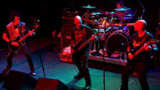 "ENGLISH DOGS ""Brainstorm"" Live 2/19/12"